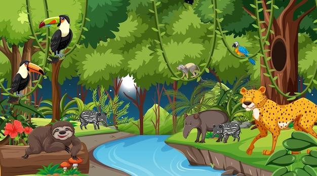 Floresta à noite, cena de paisagem com diferentes animais selvagens