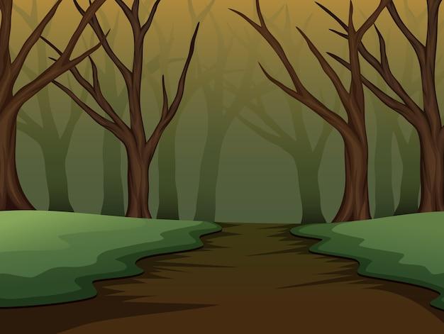 Floresta assustadora de halloween na noite