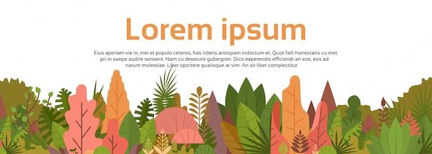 Floresta colorida sobre branco cópia espaço woods banner