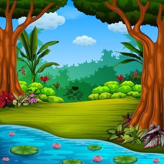 Floresta com o lago e lótus