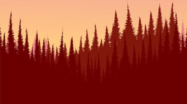 Floresta de pinheiros vermelhos