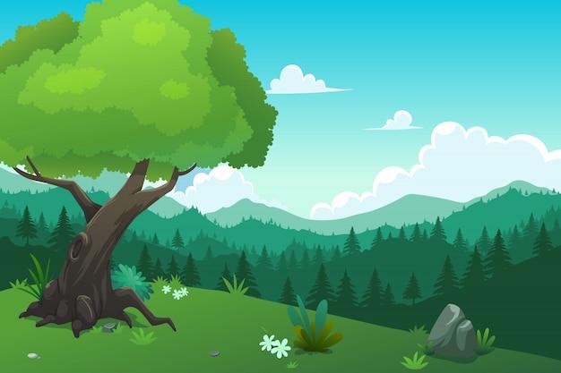Floresta e monte