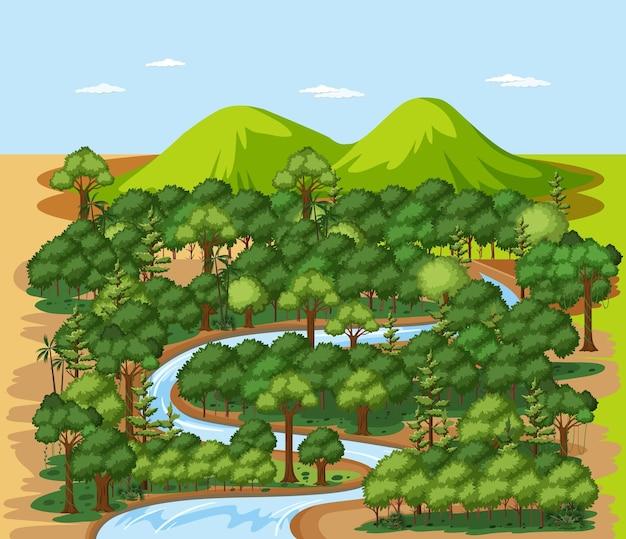 Floresta natureza paisagem