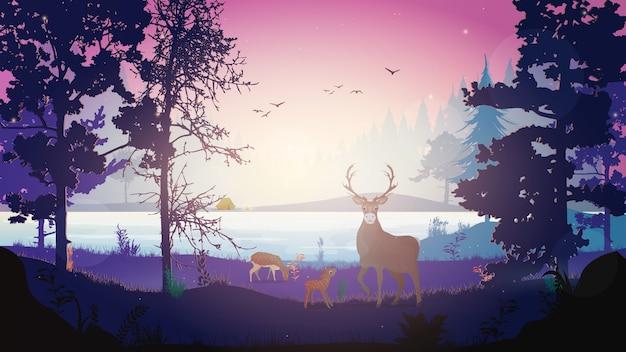 Floresta noturna com ilustração de veado