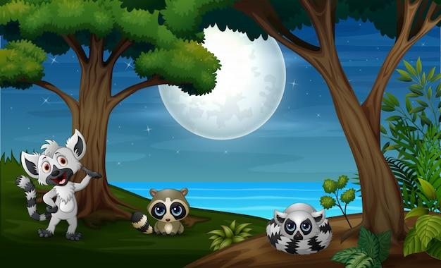 Floresta noturna com três lêmures