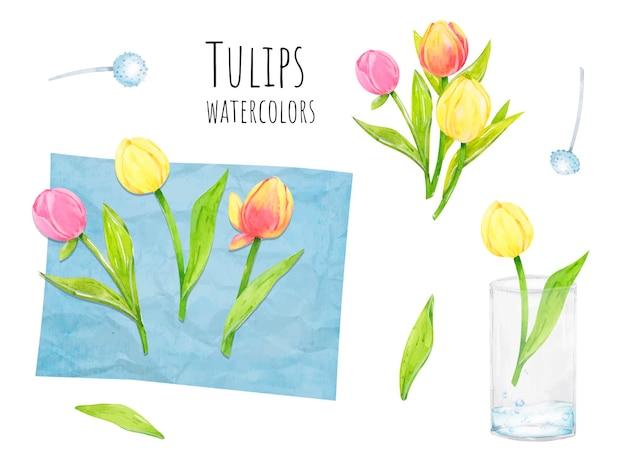 Florística de arranjo de flores de tulipas em aquarela
