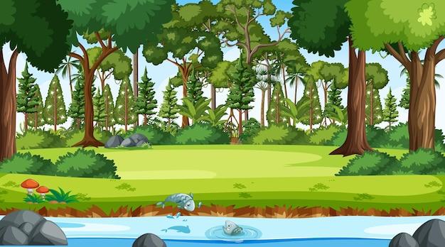 Fluxo do rio através da cena da floresta durante o dia