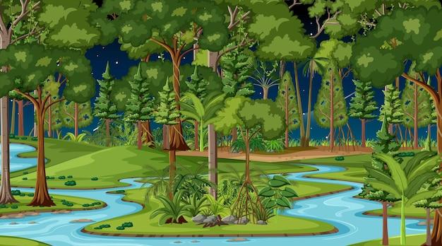 Fluxo do rio pela cena da floresta à noite