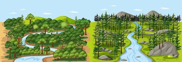 Fluxo na cena da paisagem da floresta