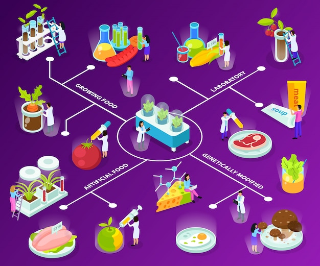Fluxograma isométrico de alimentos artificiais com cientistas durante experimentos com a ingestão de ingredientes em roxo