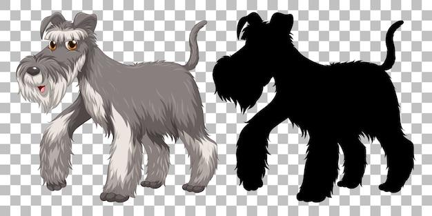 Fofo fox terrier e sua silhueta em fundo transparente