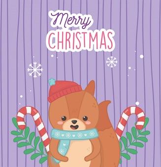 Fofo urso com bastões de doces de chapéu deixa feliz natal