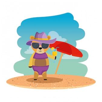 Fofo urso feminino com chapéu de verão e coquetel na praia