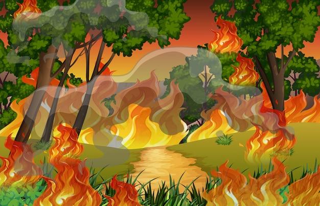 Fogo na floresta