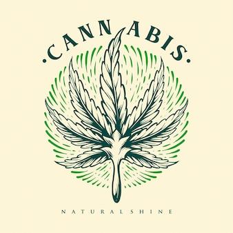 Folha cannabis gravura shine vintage