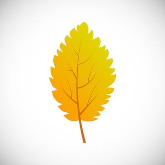 Folha da árvore de vidoeiro amarelo. folha de outono de uma árvore em um fundo branco. ilustração vetorial