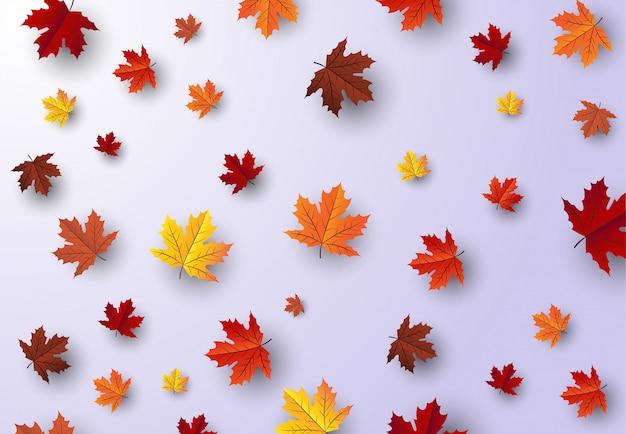 Folha de bordo, fundo de outono