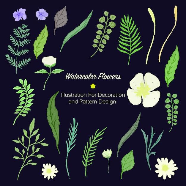 Folha de flor de ilustração vintage de cor de água para design de decoração e padrão