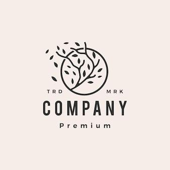 Folha de galho de árvore redonda hipster ilustração do ícone do logotipo vintage