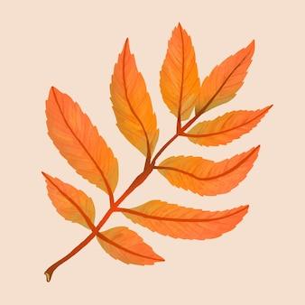 Folha de outono de vetor de elemento cinza desenhado à mão