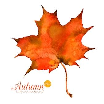 Folha de outono em aquarela. textura bonita mão desenhada de vetor