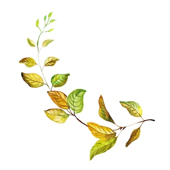 Folha de outono linda aquarela