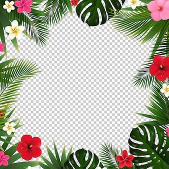 Folha de palmeira e flores de fundo transparente