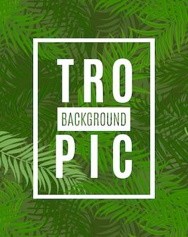 Folha de palmeira linda fundo de silhueta tropical
