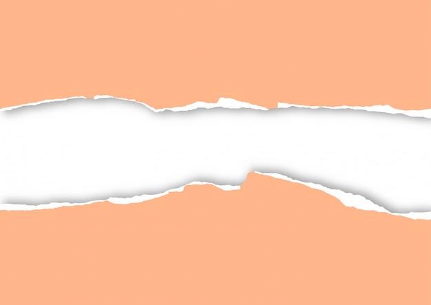 Folha de papel rasgado
