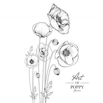 Folha de papoula e desenhos de flores.