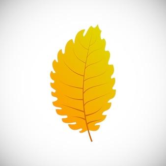 Folha de tília amarela. folha de outono de uma árvore em um fundo branco. ilustração vetorial