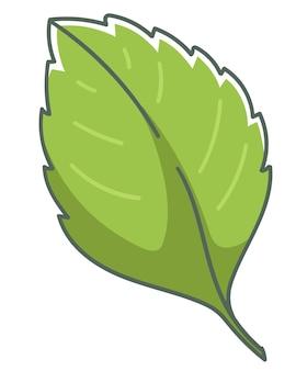 Folha em crescimento da planta de morango, folhagem isolada e folhagem, temporada de primavera ou verão. botânica de parque, bosque ou floresta. composição de florista, arbustos exuberantes ou arbustos. ilustração vetorial em estilo simples