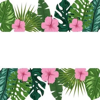 Folhagem de flores tropicais