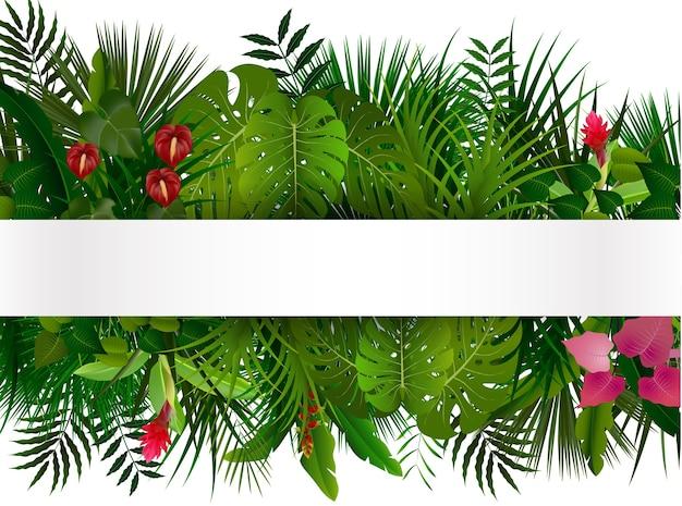 Folhagem tropical com banner horizontal isolater