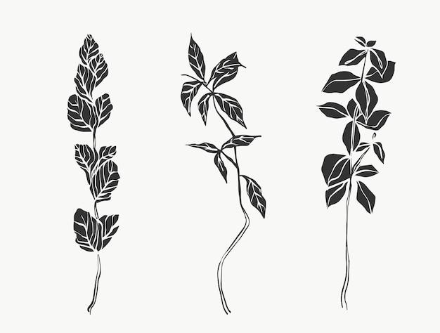 Folhas botânicas linha arte abstrata moderna ou linha de plantas mínimas perfeita para decoração de casa como
