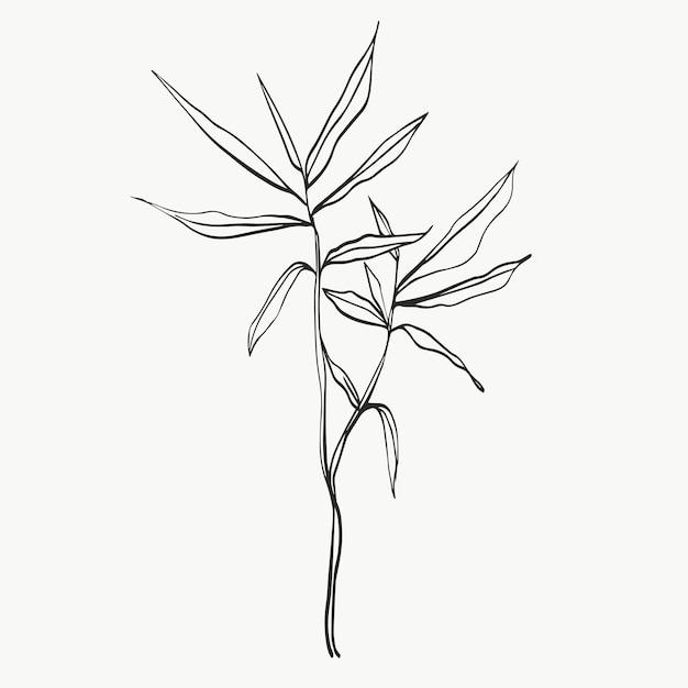 Folhas botânicas linha arte abstrata moderna ou linha de plantas mínimas perfeita para decoração de casa, como