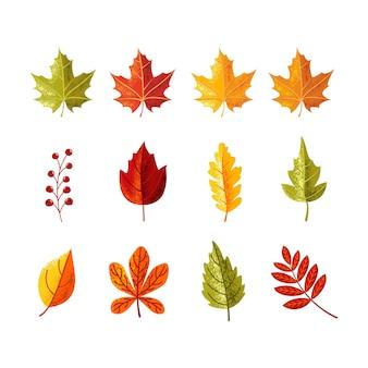 Folhas coloridas com sombra de grãos para a temporada de outono