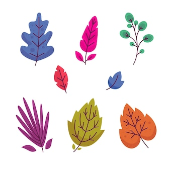 Folhas coloridas de design plano