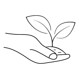 Folhas crescendo na mão dando mão com planta jovem no solo pode ser usado para produto natural