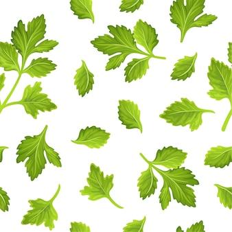 Folhas de aipo, salsa e coentro. padrão sem emenda