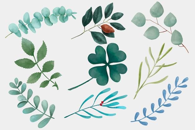Folhas de aquarela desenhando um conjunto de clipart