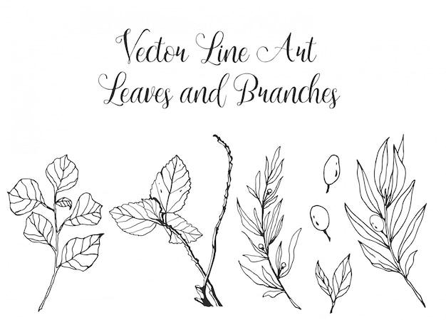 Folhas de arte de linha e ramos