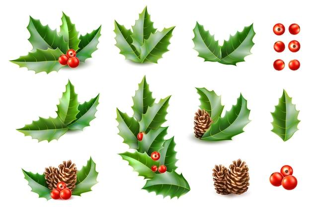 Folhas de azevinho com bagas pinha coleção realista feliz natal