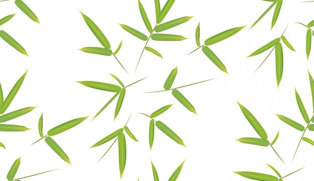 Folhas de bambu verde