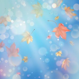 Folhas de bordo de outono voando
