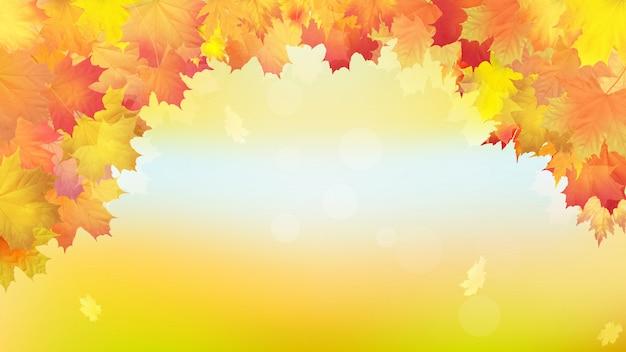 Folhas de bordo dourado outono caindo.
