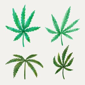 Folhas de cannabis em aquarela