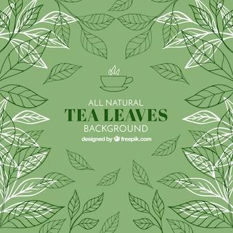 Folhas de chá de fundo com vegetação