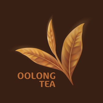 Folhas de chá oolong realistas isoladas no fundo branco