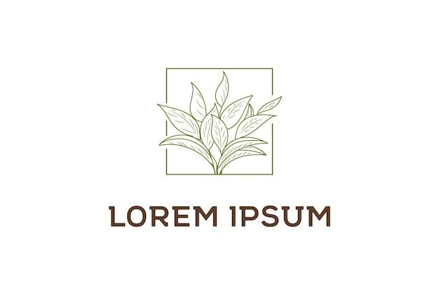 Folhas de chá verde elegante minimalista vintage design de logotipo em vetor